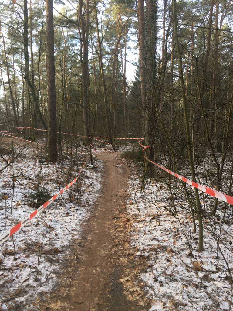 Trailartige Strecke beim Cyclocross Cup in BUchholz